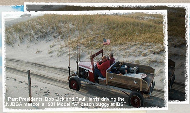 New jersey beach buggy association for Ibsp fishing report